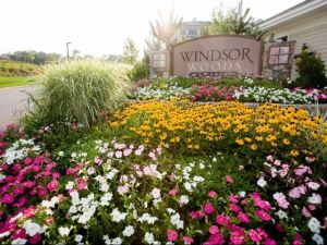 windsor woods apartments canton mi. beautiful ideas. Home Design Ideas